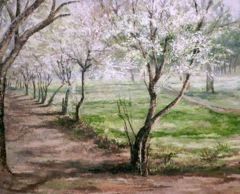 shehla-farooq-oil-on-canvas-36-x-36